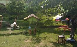 Trekking & Camping at Narkanda
