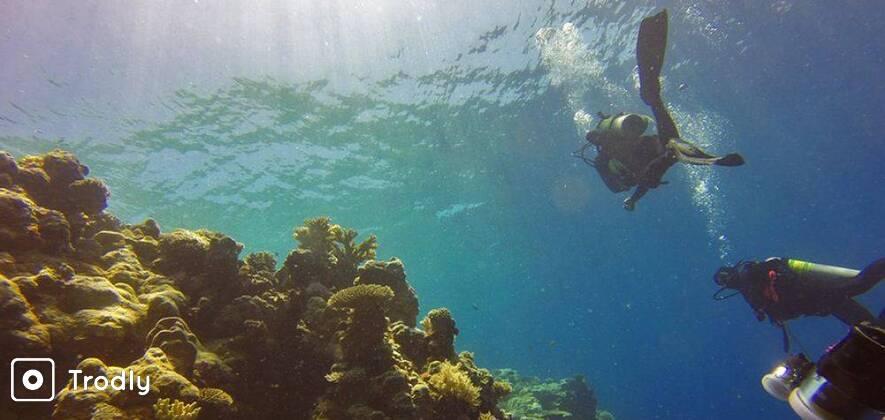 Scuba Diving near Chidyatapu Island