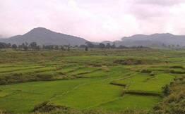 Araku Valley Day Tour from Visakhapatnam