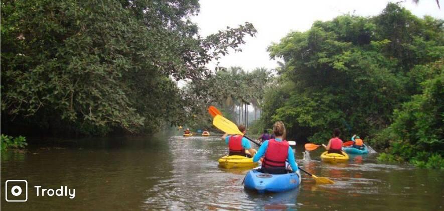 Goa Kayaking Excursion in Sal Backwaters