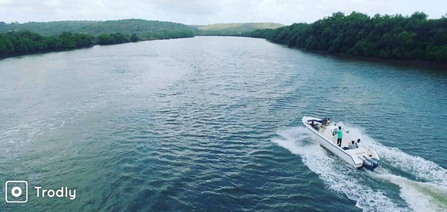 Open Speed Boat Private Cruise in Goa