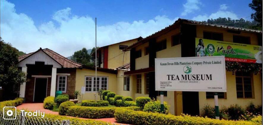Story Of Tea - Munnar's 100 Year Old Tea Factory Visit