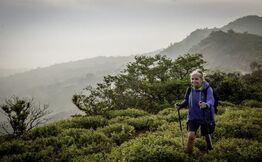 Nishani Motte Trek In Brahmagiri Range - Trodly
