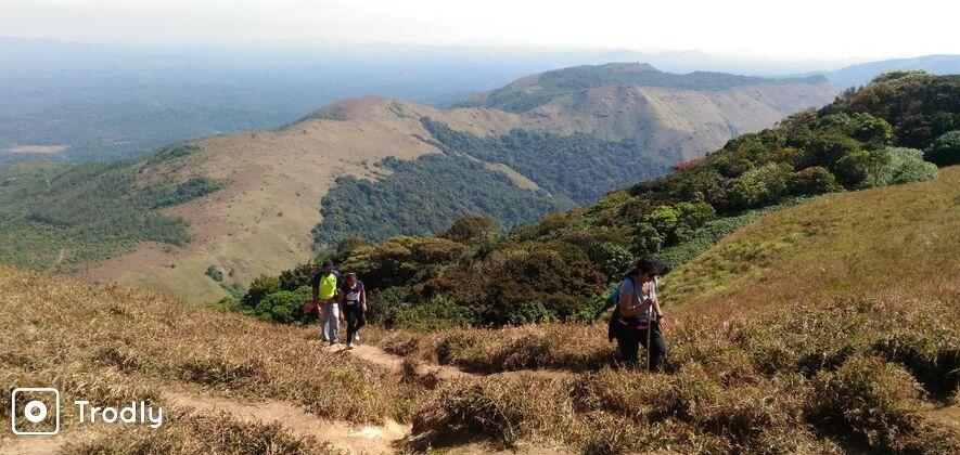 Tadiandamol - One day trek