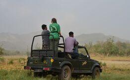 Jeep safari in Rajaji National Park