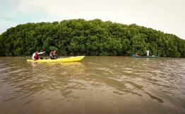 Kayaking in Paravur Backwaters - Kollam