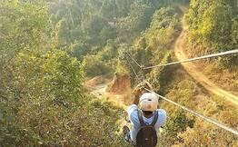 Rainforest Walk & Ziplines
