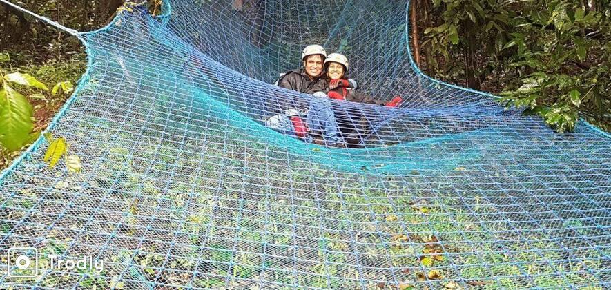 Rainforest Walk & Treetop Adventure