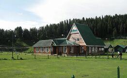 Same Day Trip To Gulmarg From Srinagar