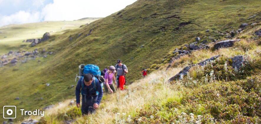 Pangarchulla Peak Trek via Kuari Pass