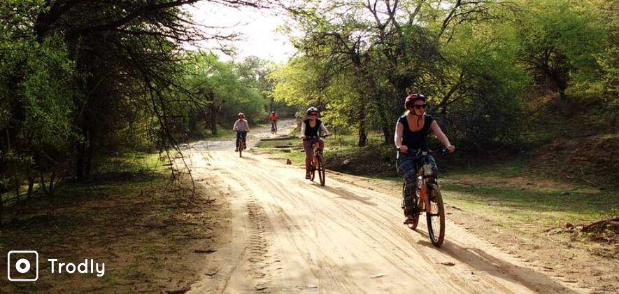 Bicycle Safari Through Nahargarh Biological Park