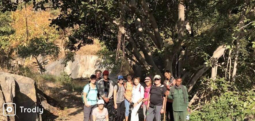 Hike Through Kumbhalgarh Wildlife Sanctuary
