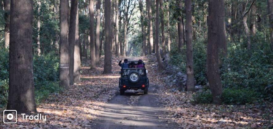 Four Days Corbett National Park Tour