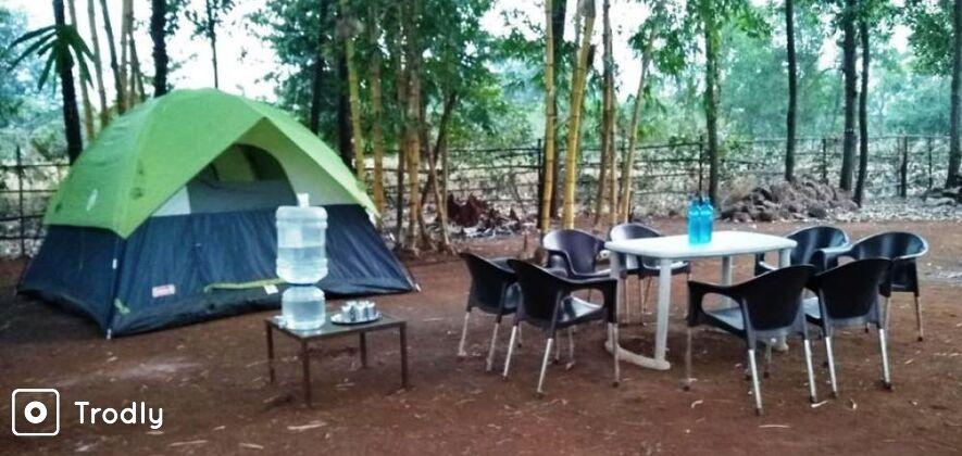 Kolad Camping Experience