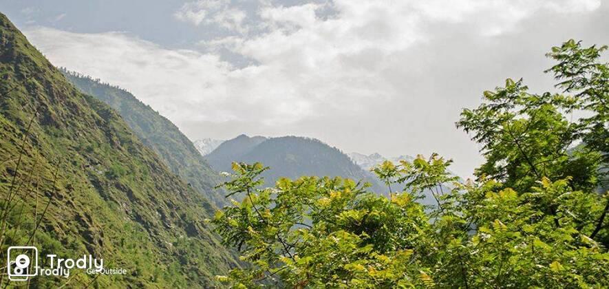 Shilt Hut Trek in Great Himalayan National Park