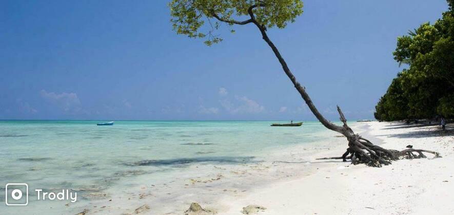 Havelock Island Trip