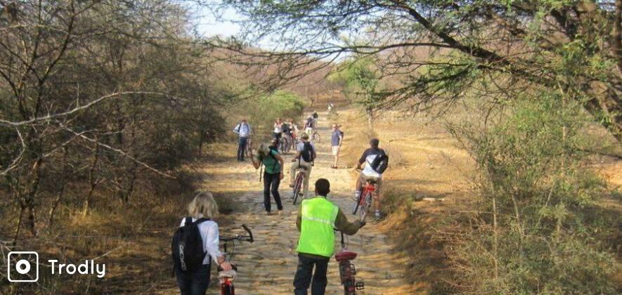 Wildlife Bicycle Tour In Jaipur
