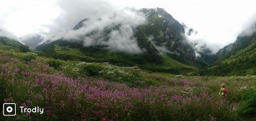 Valley Of Flowers Trek Ex.Dehradun