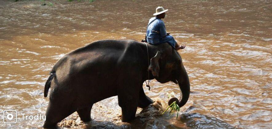 Kanchanaburi 2 Days and 1 Night Historic and Jungle Experience