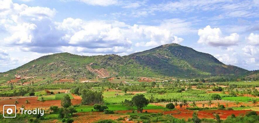 Nandi Hills Day Tour from Bangalore with Pet