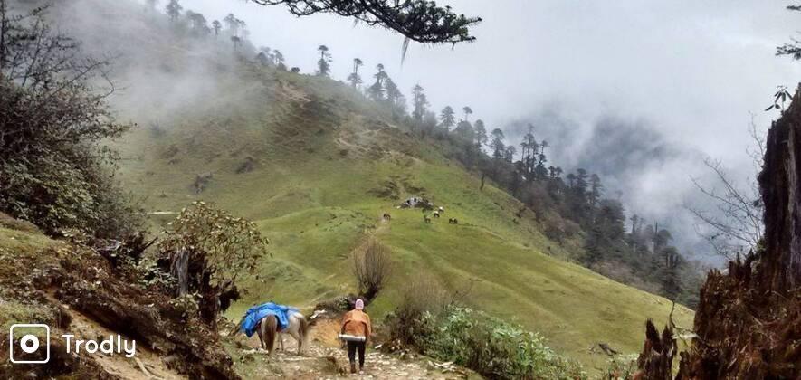 Bailey Trail Trek, Arunachal Pradesh