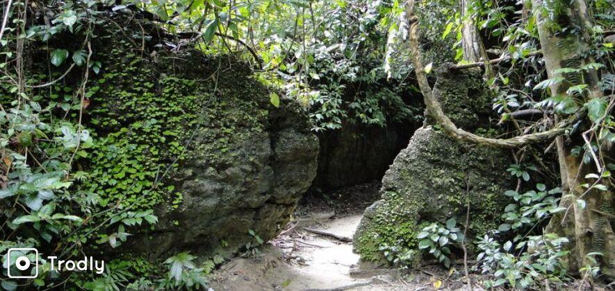 Limestone Caves Tour at Baratang Island