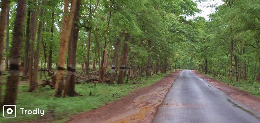Explore Lambasingi & Araku Valley 2N/3D