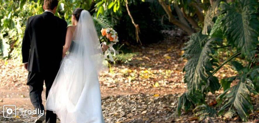 Munnar Tree House Honeymoon - 2 Nights/ 3 Days