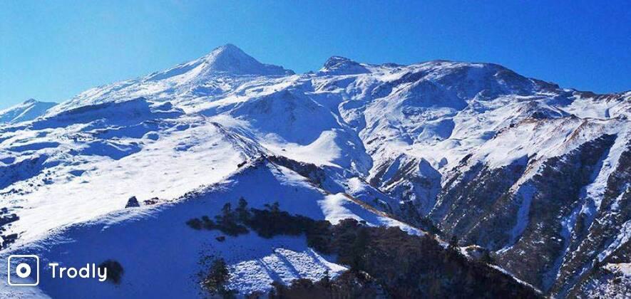 Kuari Pass and Pangarchulla Peak Trek