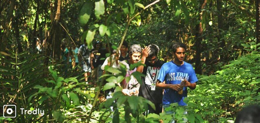 Tambdi Surla Waterfall Trek