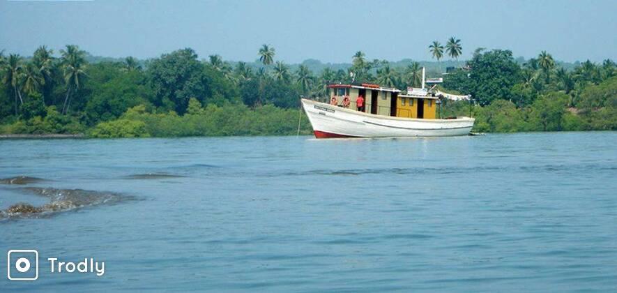 Goa Cruise with Kayaking